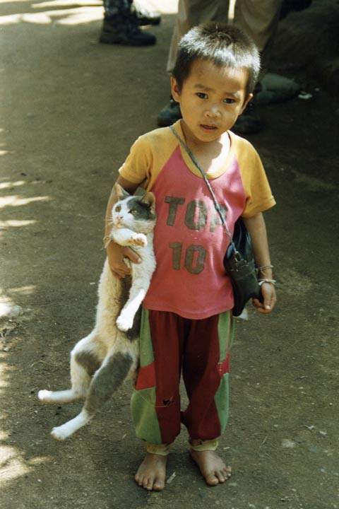Boy and cat