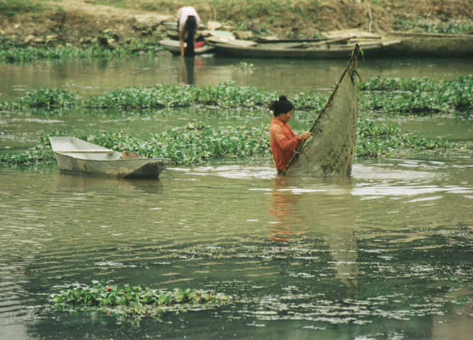 Fishing in Vietnam