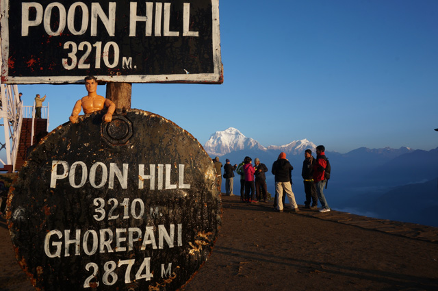 Harley at Poon Hill