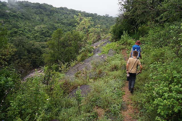 Chinnar Wildlife Sanctaury, near Munnar, Kerala