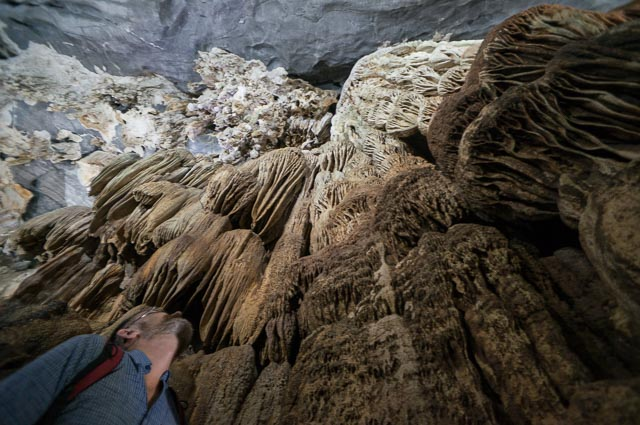 Phong Nha Cave in Phong Nha Ke Bang national Park in Vietnam