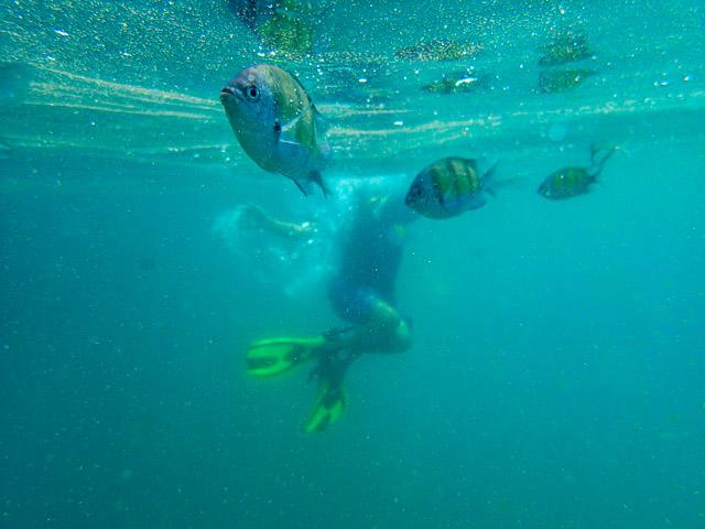 4 Islands snorkelling Thailand
