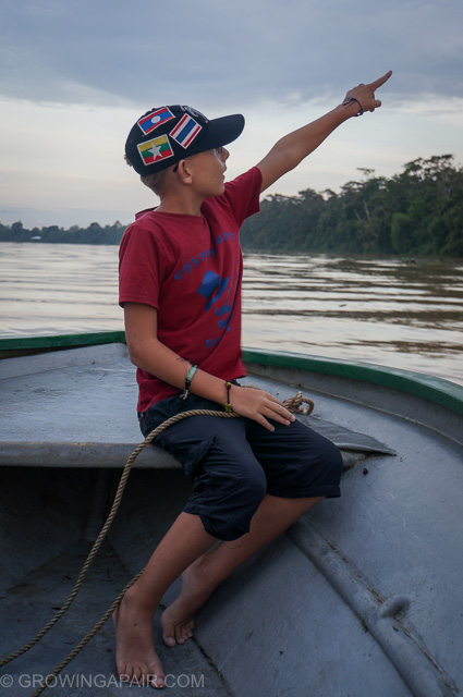 Kinabatangan river tours are brilliant for kids
