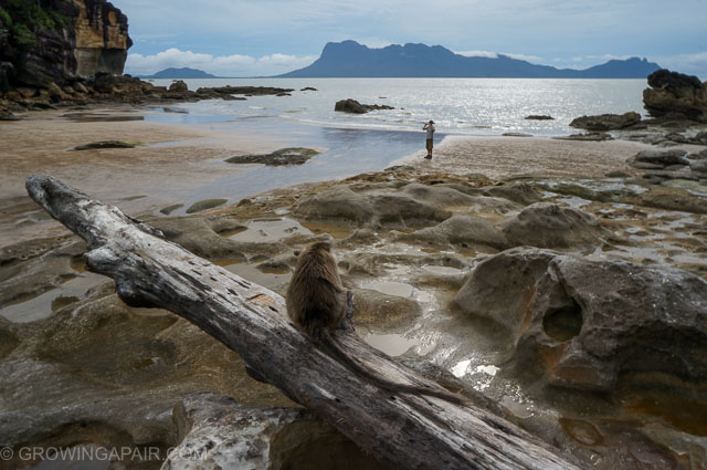 Bako National park beach in Borneo