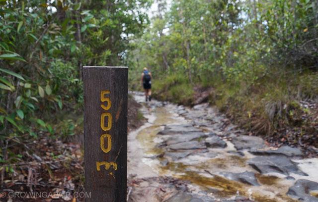Bako National park trails, Borneo, malaysia