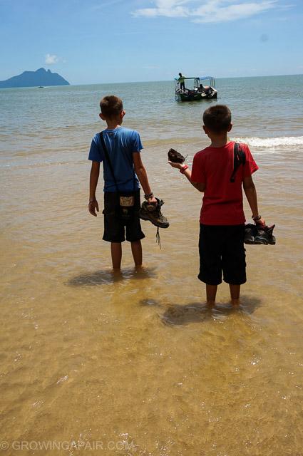 The beach, Bako National Park