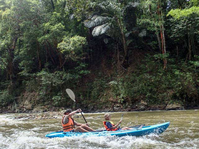 Kayaking through the jungle