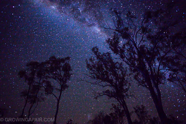 Stars and the milkyway in Australian road trip night sky