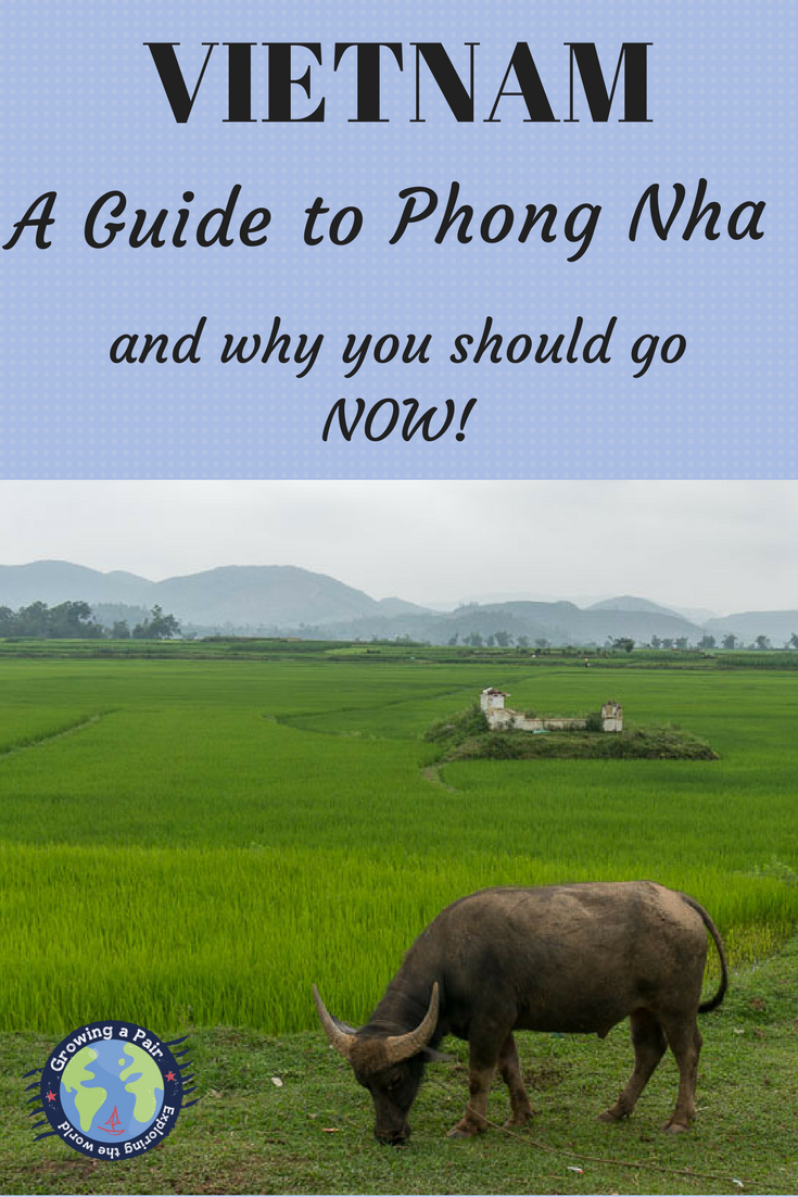 Phong Nha national Park, Vietnam