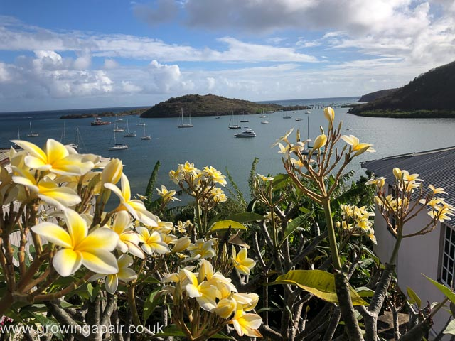 View over Grenada