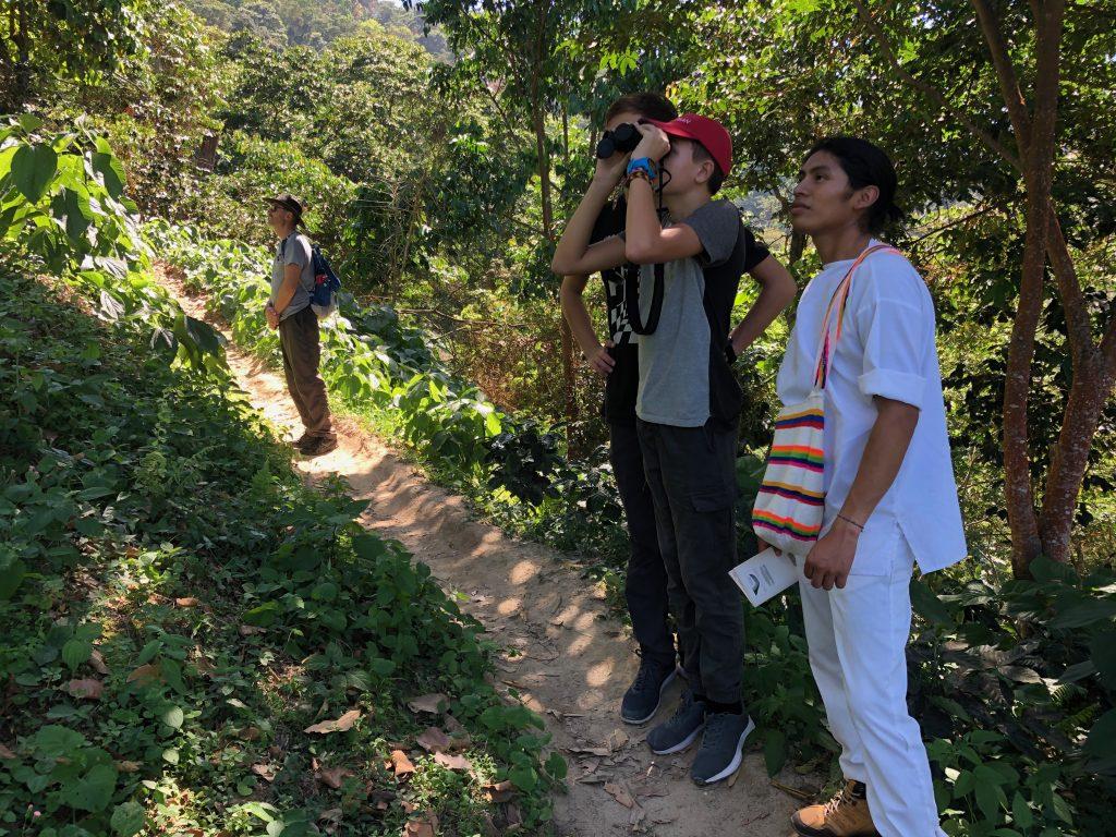 Biord watching in Minca Colombia