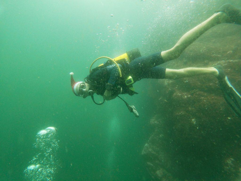 Xmas Day Diving